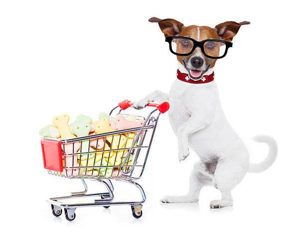 خرید اینترنتی محصولات پت