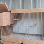 آموزش ساخت قفس پرنده