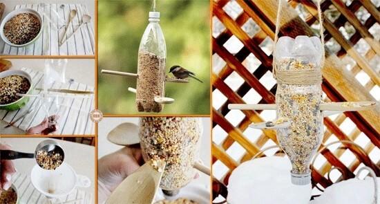 ساخت دانخوری پرنده
