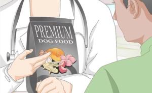 غذای کنسرو سگ