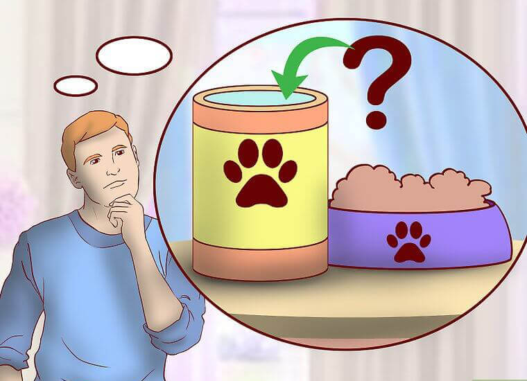 اطلاعیه های غذای سگ
