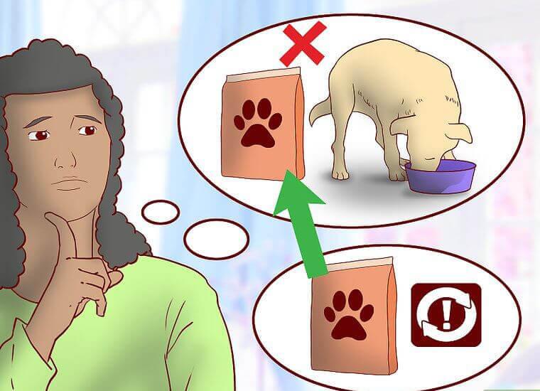 هشدارهای غذای سگ