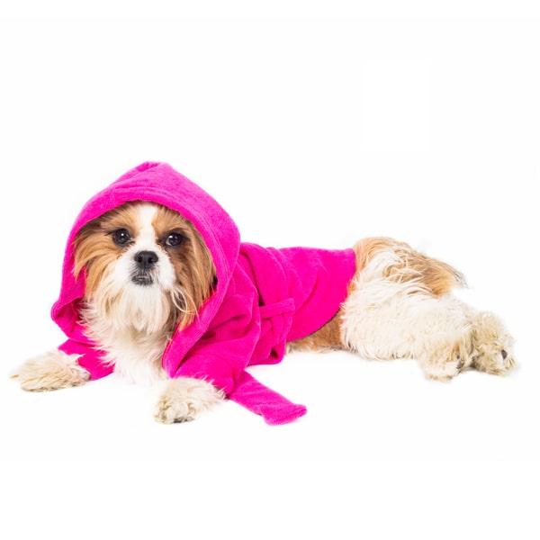حوله سگ مدل تن پوش