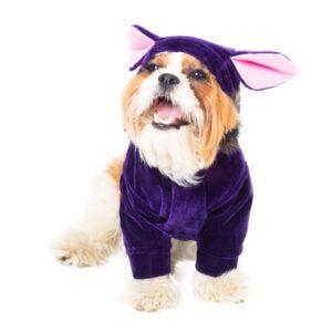 سگ قهوه ای در لباس سگ کلاهدار کد 137 سرمه ای