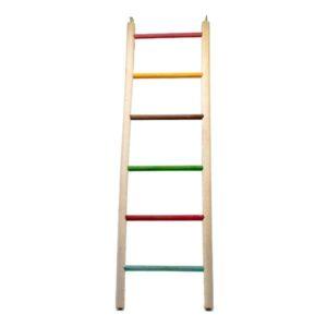 اسباب بازی طوطی طرح نردبان سایز 5 کدBA065 رنگارنگ