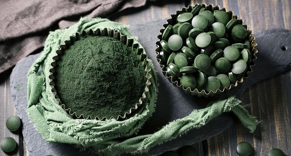 کاربرد جلبک اسپرولینا در محصولات حیوانات خانگی